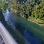 zwischen Rheinbrücke und Stadtgarten an der Insel