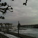 Stadtgarten Blick auf den Hafen bei Schnee Konstanz Bodensee