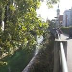 an der Insel kurz vorm Stadtgarten Konstanz Bodensee