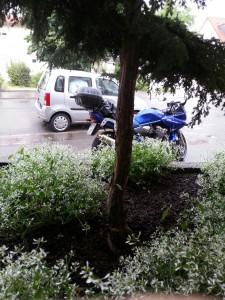 Mopped im Regen