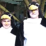 zwei Tuxe fasnet Pinguin aus Plüsch