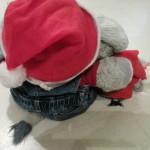 Nikolaus für und mit utele und frido in passendem Outfit - Plüschelefanten