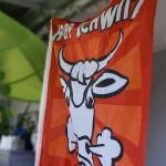 Hopp Schwiiz Fahne mit schnaubender Kuh