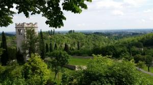 San Zenone 2014-05-19