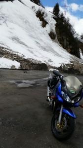 Banditin auf dem Arlberg mit Schneeresten