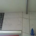 Hier ihn dem kleinen Loch wohnt - Jutta, die Spinne in unserem Badezimmer