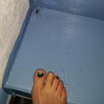 Rennspinne auf der Treppe - Größenvergleich mit Fuß