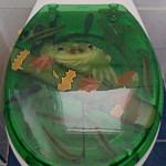 Frosch auf einem WC-Deckel
