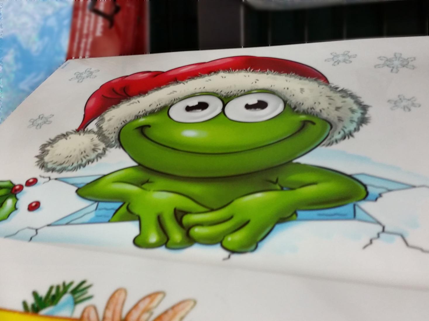 Weihnachtsmützenfroschkarte