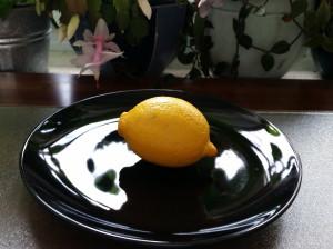 Zitronen falten, Zitronenfalter oder Projekte leiten und Projektleiter