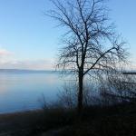 Blick auf den See von der Brauerei aus - Ruppaner Bierseminar - Konstanz Hohenegg