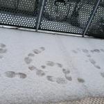 Weiße Weihnachten - 26.12. ein Hauch Schnee in Konstanz