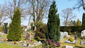 Frühling auf dem Friedhof in Konstanz