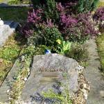 Frühling auf dem Friedhof - Pflanzen und mehr
