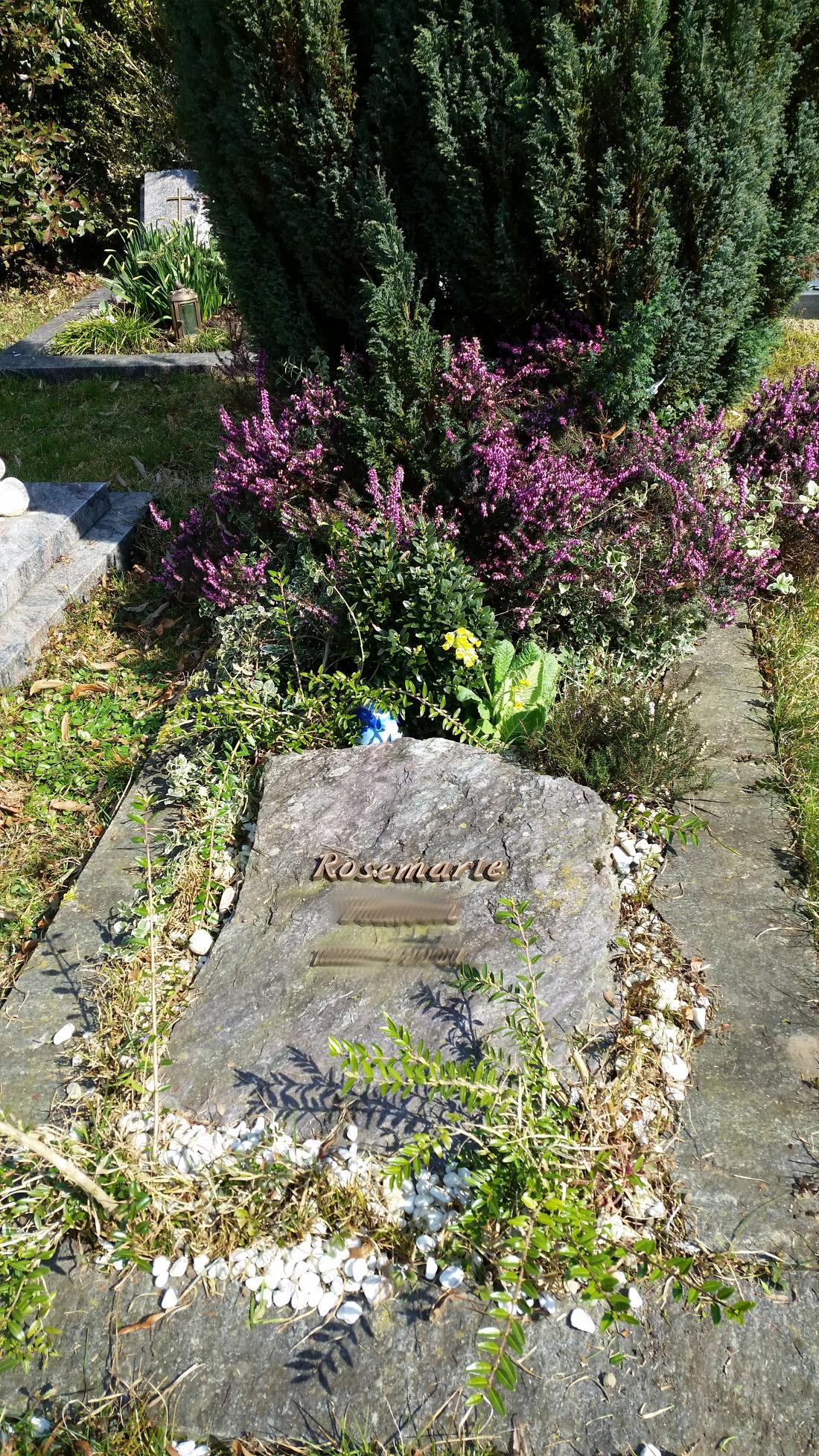 Prächtig Frühling auf dem Friedhof – Pflanzen und mehr – uteles Blog &QP_53