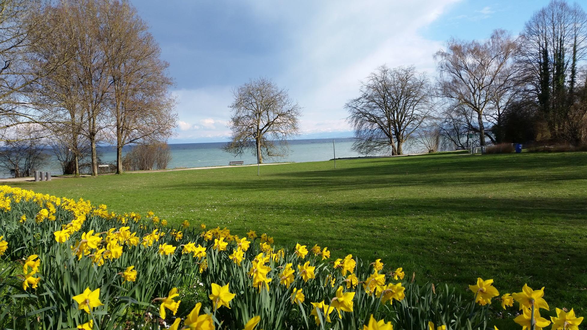 See - Bodensee - Konstanz - Frühling - die Alpen ganz nah