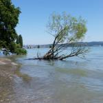 Hörlepark Konstanz - Bodensee Sommer 2015