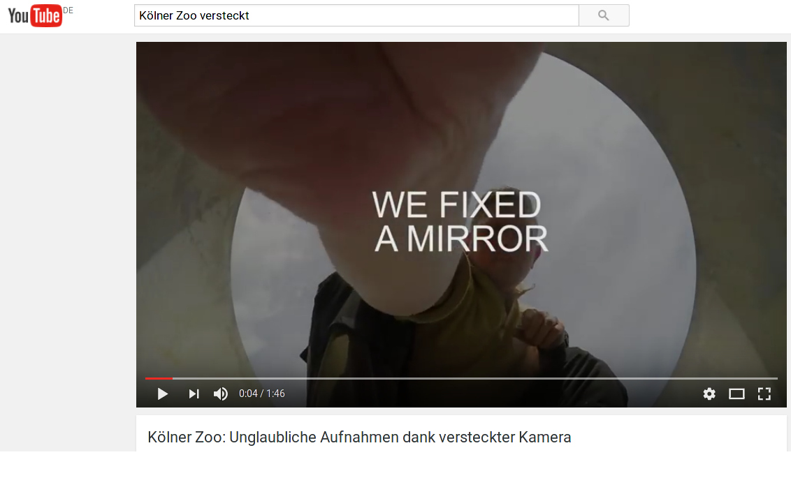 We fixed a mirror - Vorschau aufs Video vom Kölner Zoo