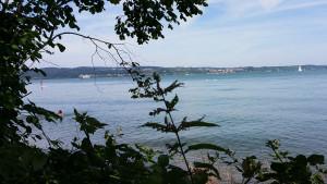 Sommer, See, Konstanz im Hintergrund die Fähre