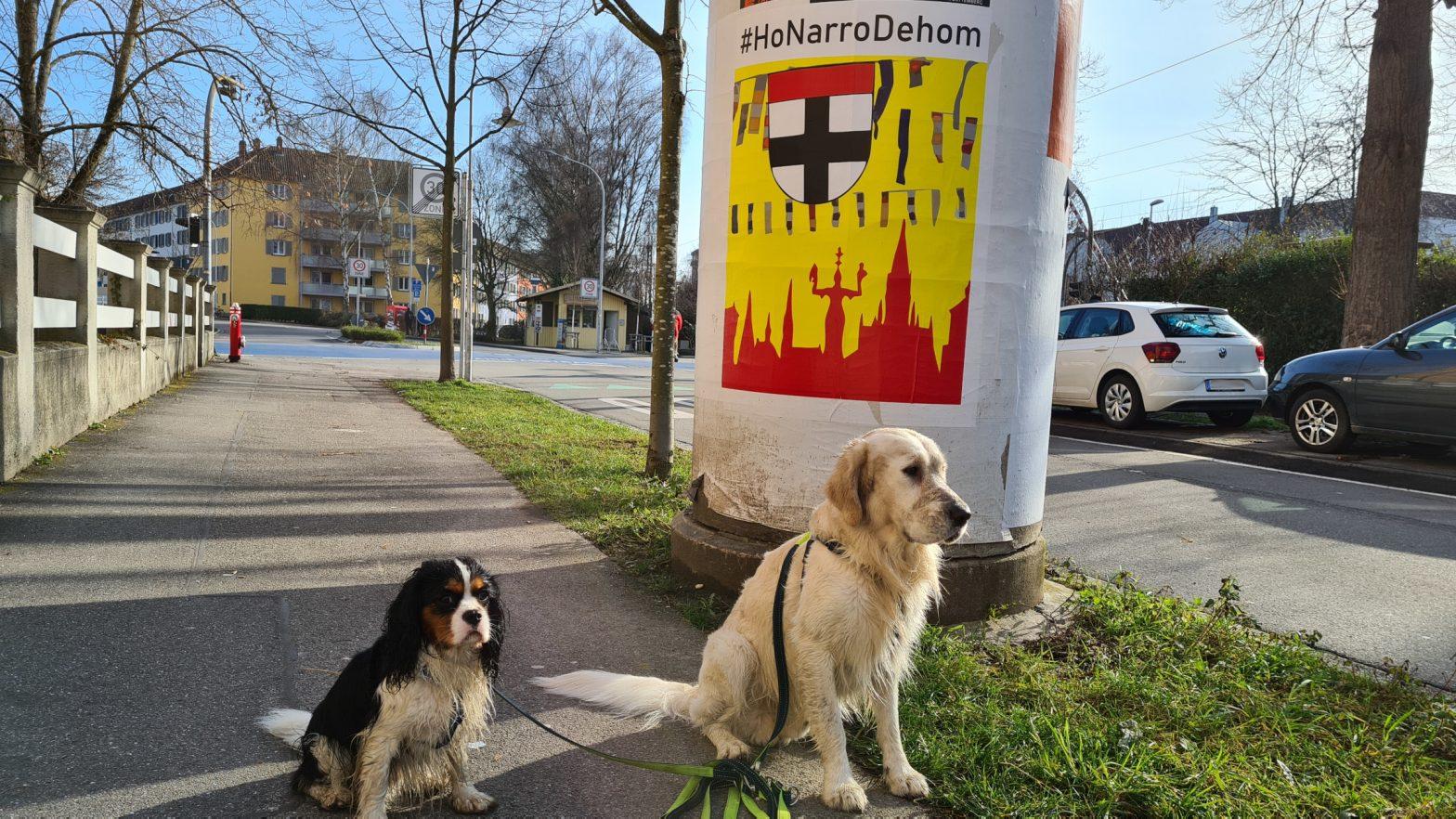 HonarroDehom-Logo mit dem Wappen der Stadt Konstanz, badischen Farben und Narrenbändeln - hier als Plakat an einer Litfaßsäule in Petershausen im Sonnenschein, davor der Golden Retriever Richie und der Cavalier-King-Charles Gismo
