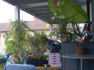 balkon pflanzen blumen gr ne ecke uteles blog. Black Bedroom Furniture Sets. Home Design Ideas