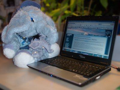 utele und frido schauen sich am Laptop ihr Wichtelgeschenk an